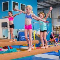 fitnastics gym pros
